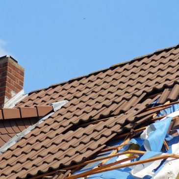 Understanding the Basics of Your Roof Systems